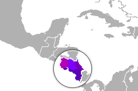 mapa variantes dialectos español costa rica costarricense